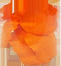 Orange$3.99